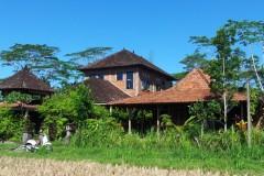 Swallow-Guesthouse-Bali3-1024x616